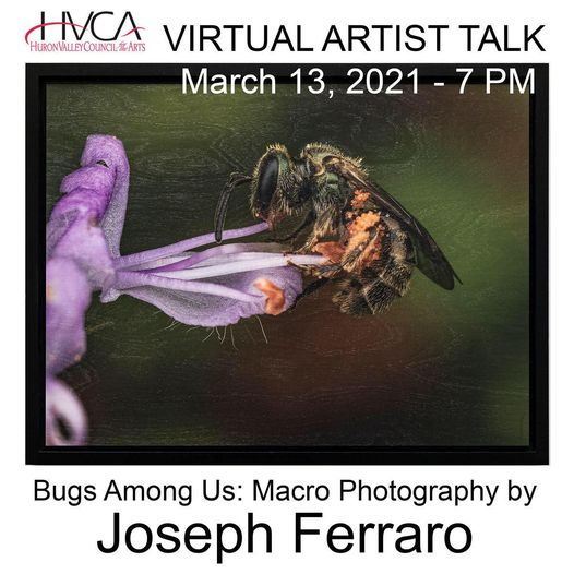 """Bugs Among Us"" Artist Talk"